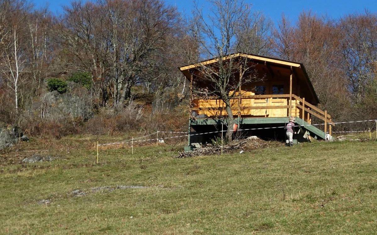 Cabin Walk